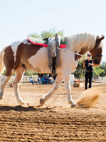 2016_Vaulting_Camelot_(1258_of_3844)