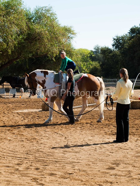 2016_Vaulting_Camelot_(1452_of_3844)