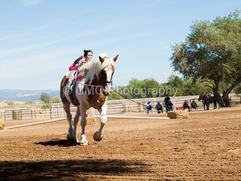 2016_Vaulting_Camelot_(2448_of_3844)