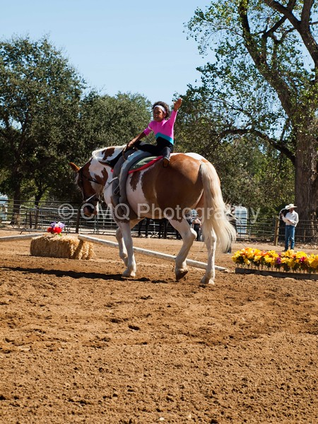 2016_Vaulting_Camelot_(2423_of_3844)