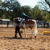 2016_Vaulting_Camelot_(1448_of_3844)