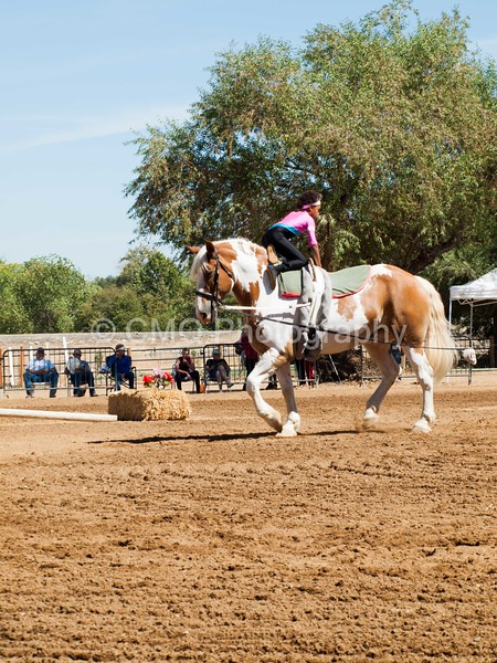 2016_Vaulting_Camelot_(2425_of_3844)