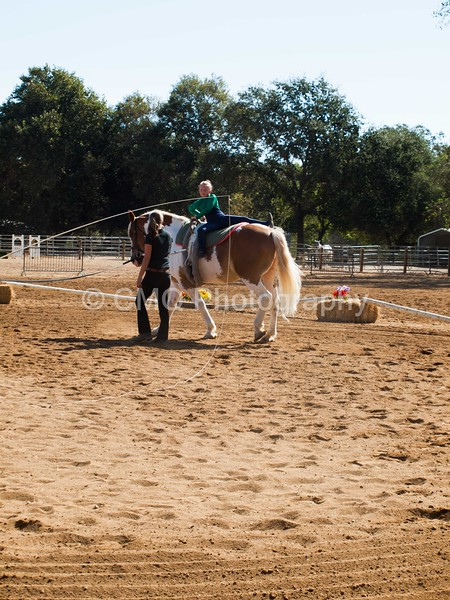 2016_Vaulting_Camelot_(1461_of_3844)