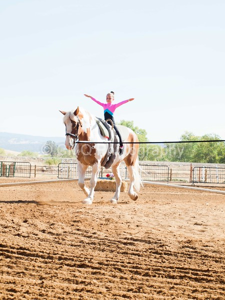 2016_Vaulting_Camelot_(1265_of_3844)