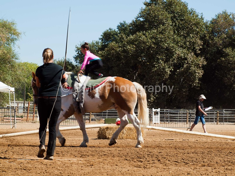 2016_Vaulting_Camelot_(2470_of_3844)