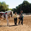 2016_Vaulting_Camelot_(1465_of_3844)