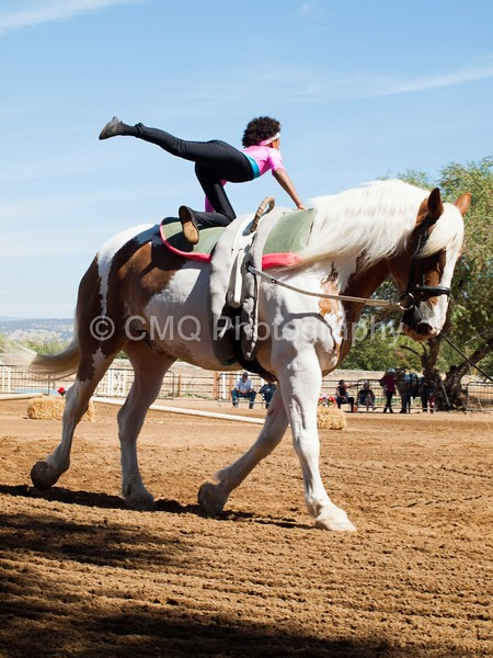 2016_Vaulting_Camelot_(2422_of_3844)