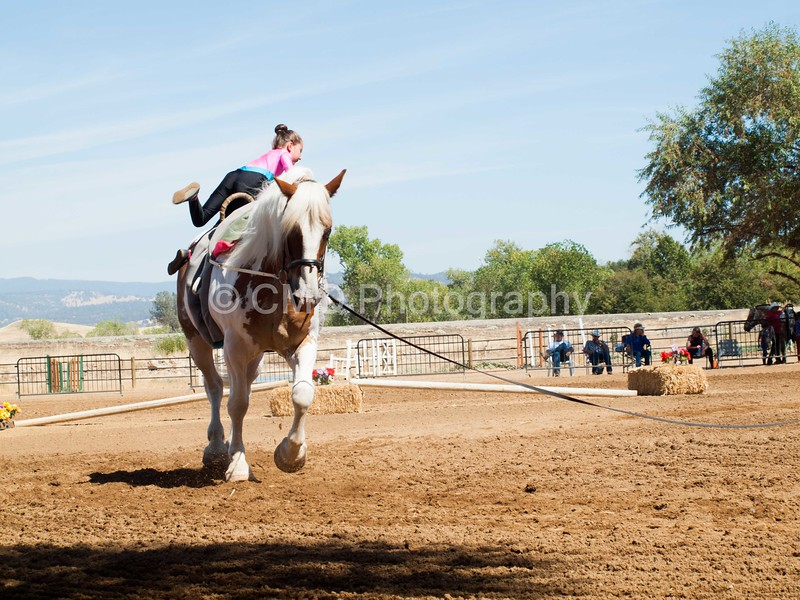 2016_Vaulting_Camelot_(2465_of_3844)