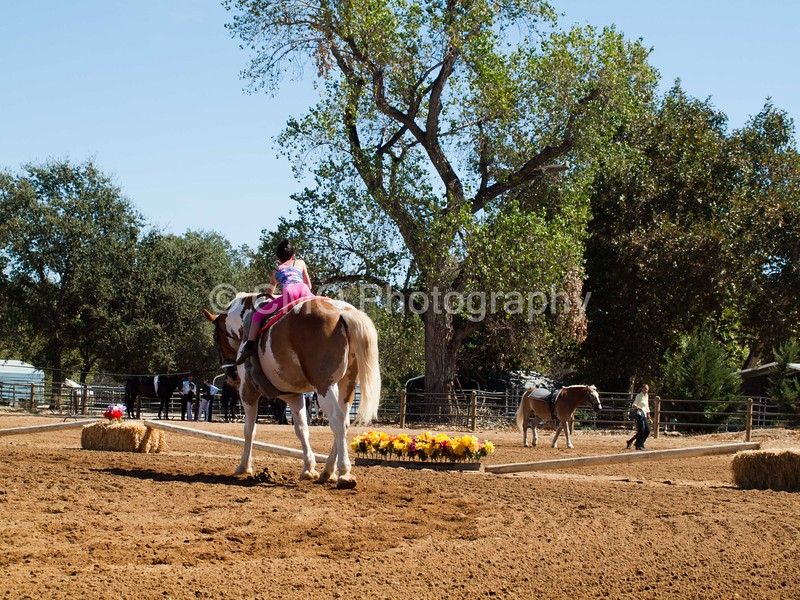 2016_Vaulting_Camelot_(2431_of_3844)