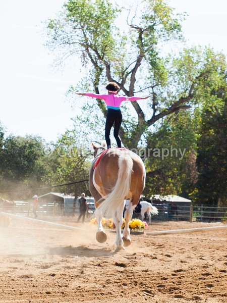 2016_Vaulting_Camelot_(1220_of_3844)