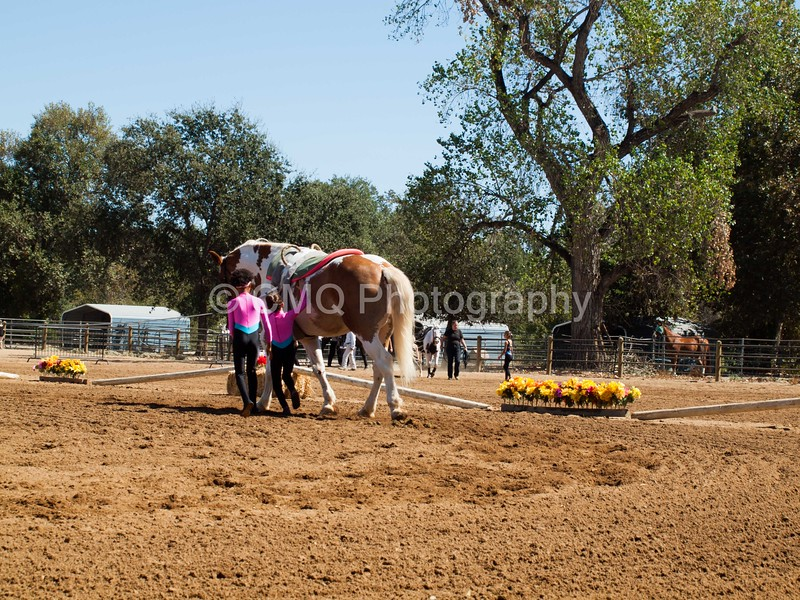 2016_Vaulting_Camelot_(2452_of_3844)