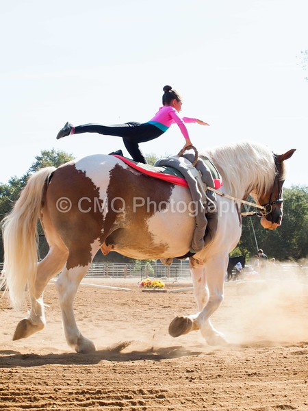 2016_Vaulting_Camelot_(1270_of_3844)