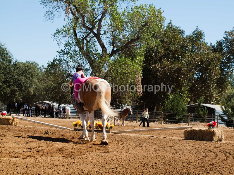 2016_Vaulting_Camelot_(2430_of_3844)