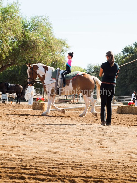 2016_Vaulting_Camelot_(1235_of_3844)