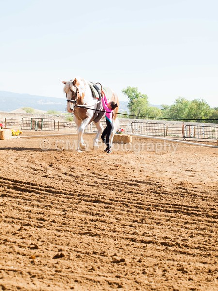 2016_Vaulting_Camelot_(1252_of_3844)