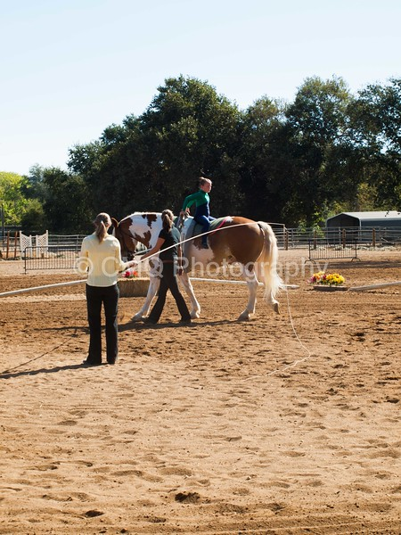2016_Vaulting_Camelot_(1462_of_3844)