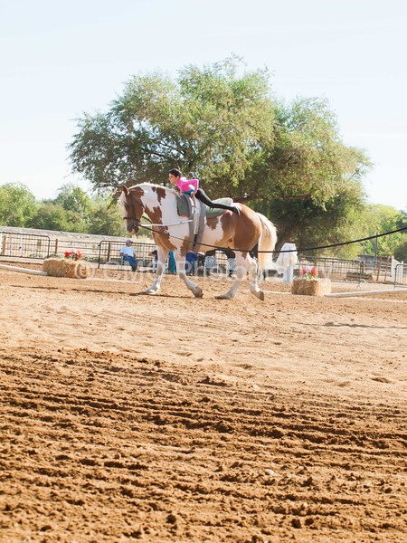 2016_Vaulting_Camelot_(1248_of_3844)