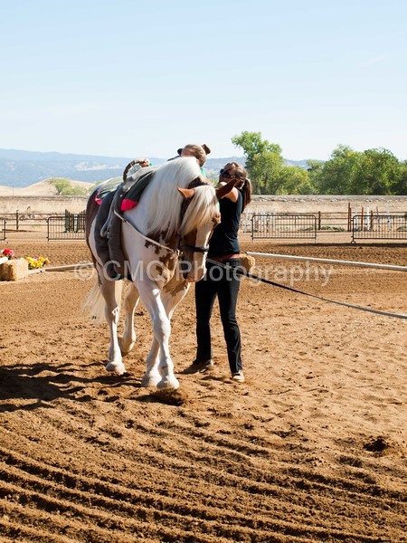2016_Vaulting_Camelot_(1441_of_3844)