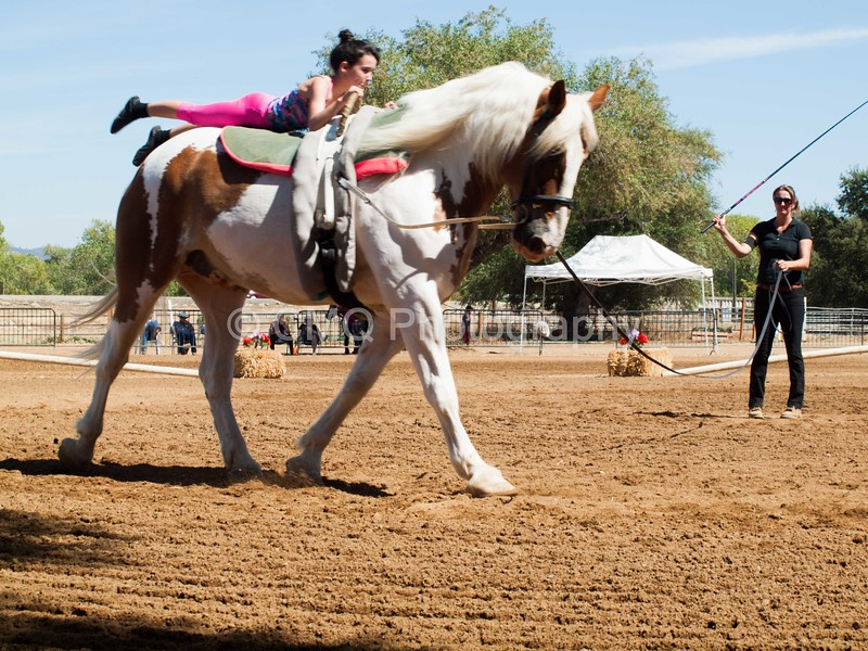 2016_Vaulting_Camelot_(2449_of_3844)