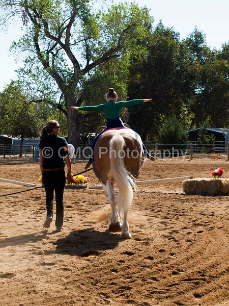 2016_Vaulting_Camelot_(1444_of_3844)