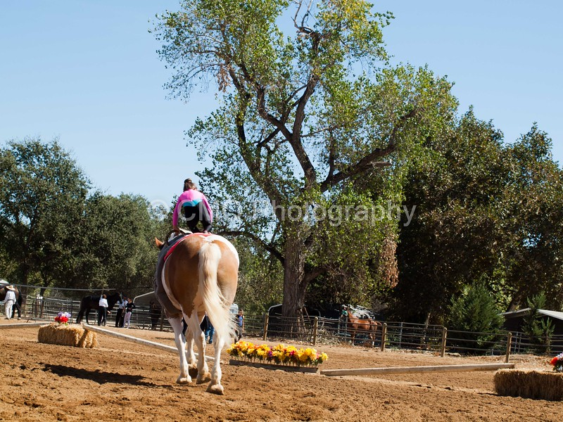 2016_Vaulting_Camelot_(2459_of_3844)