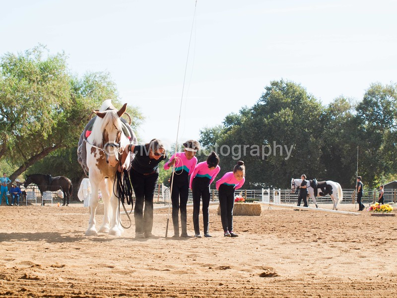 2016_Vaulting_Camelot_(1280_of_3844)