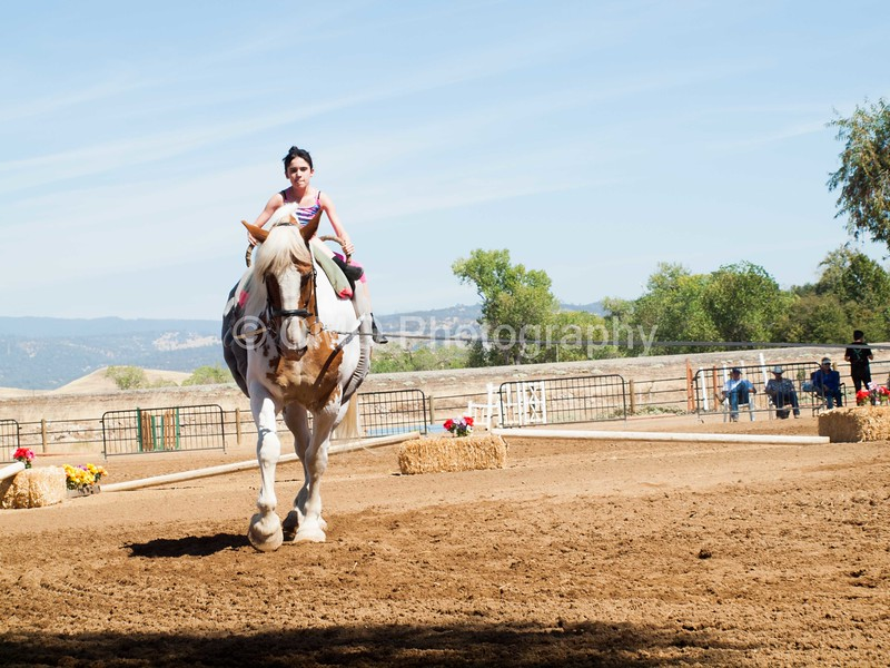 2016_Vaulting_Camelot_(2436_of_3844)