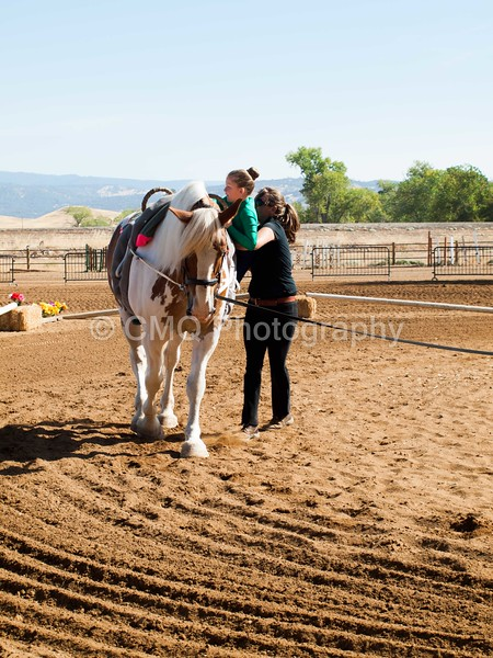 2016_Vaulting_Camelot_(1440_of_3844)