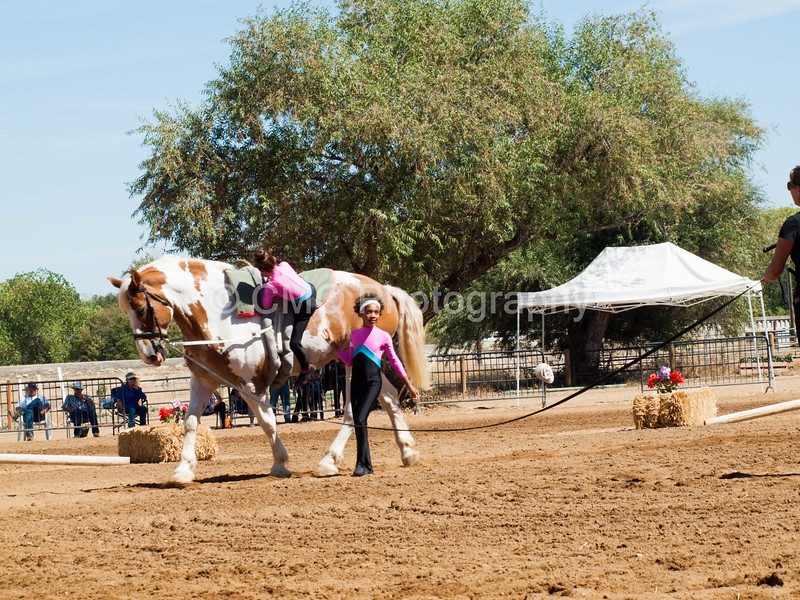 2016_Vaulting_Camelot_(2455_of_3844)