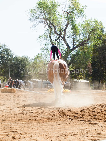 2016_Vaulting_Camelot_(1272_of_3844)