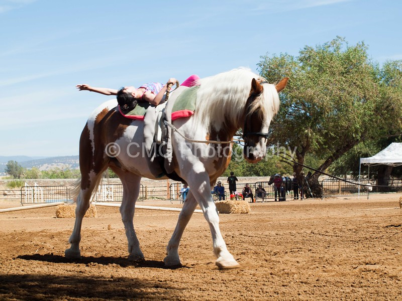 2016_Vaulting_Camelot_(2438_of_3844)