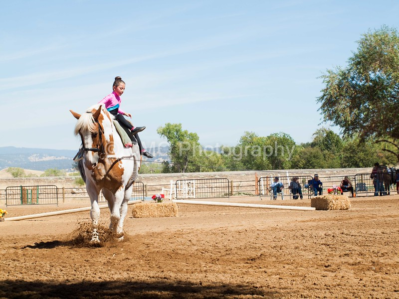 2016_Vaulting_Camelot_(2473_of_3844)