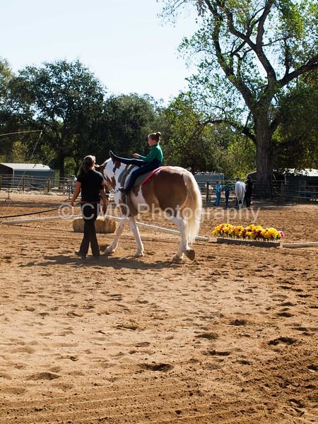 2016_Vaulting_Camelot_(1459_of_3844)
