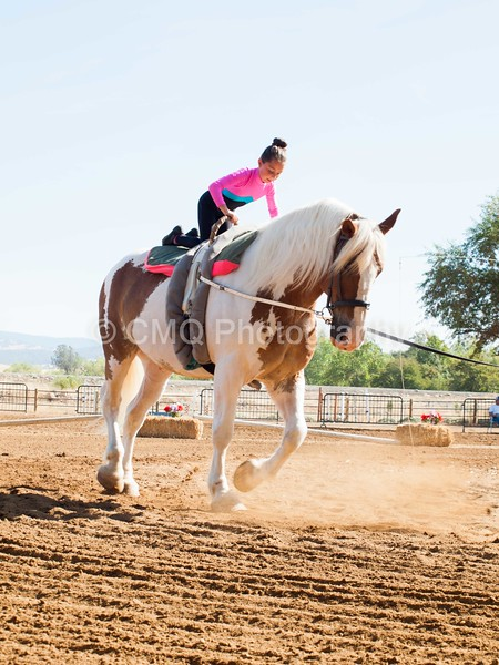 2016_Vaulting_Camelot_(1268_of_3844)