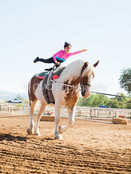2016_Vaulting_Camelot_(1241_of_3844)