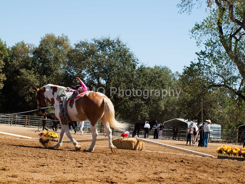 2016_Vaulting_Camelot_(2461_of_3844)