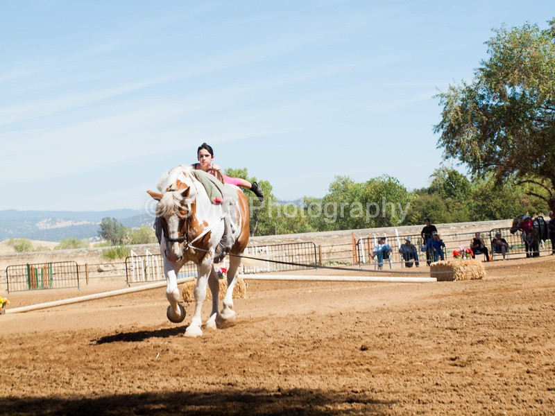2016_Vaulting_Camelot_(2447_of_3844)