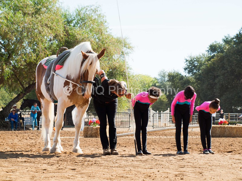 2016_Vaulting_Camelot_(1208_of_3844)