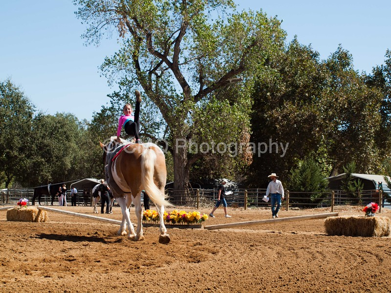 2016_Vaulting_Camelot_(2475_of_3844)