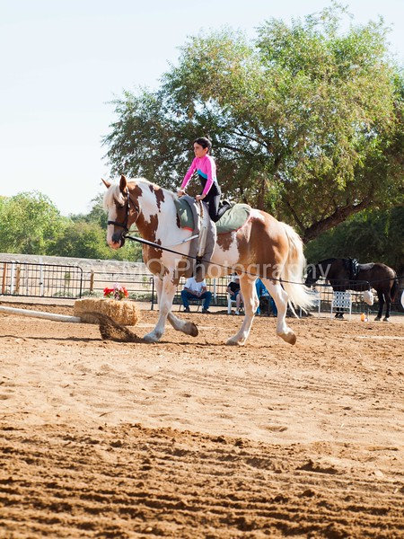 2016_Vaulting_Camelot_(1236_of_3844)