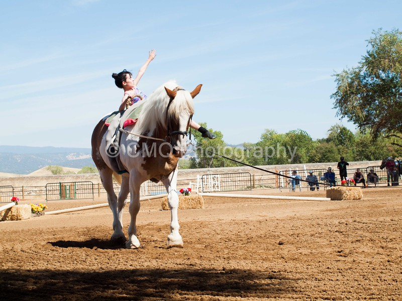2016_Vaulting_Camelot_(2437_of_3844)