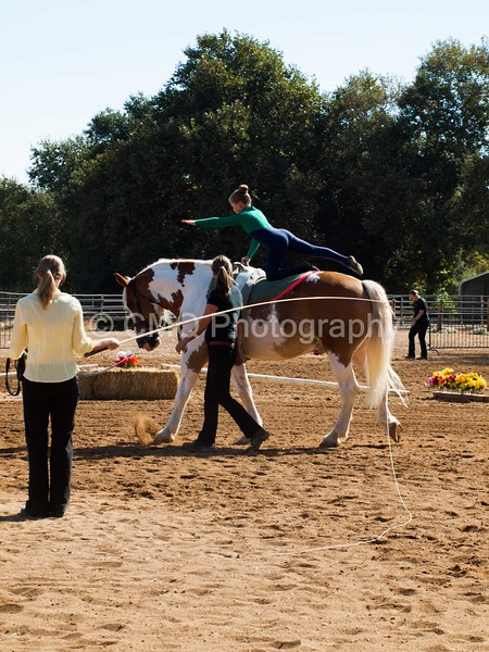 2016_Vaulting_Camelot_(1451_of_3844)