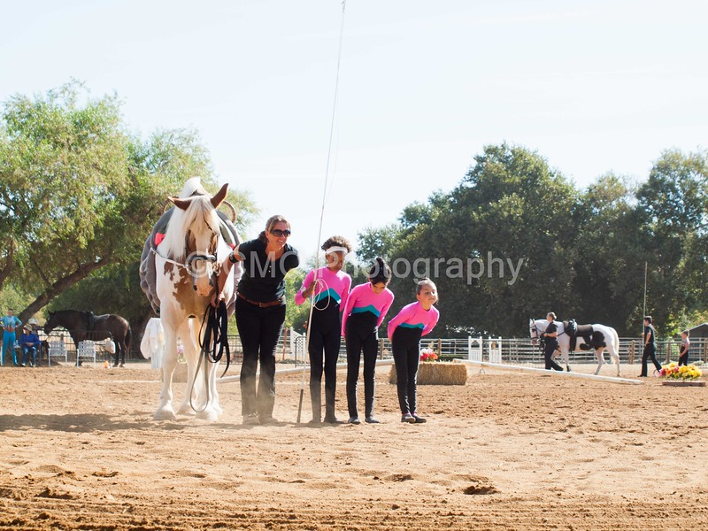 2016_Vaulting_Camelot_(1279_of_3844)