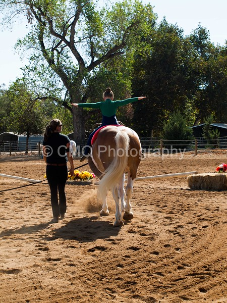 2016_Vaulting_Camelot_(1445_of_3844)