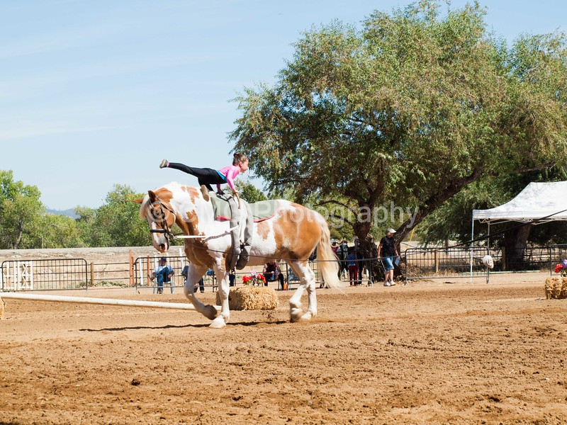 2016_Vaulting_Camelot_(2463_of_3844)
