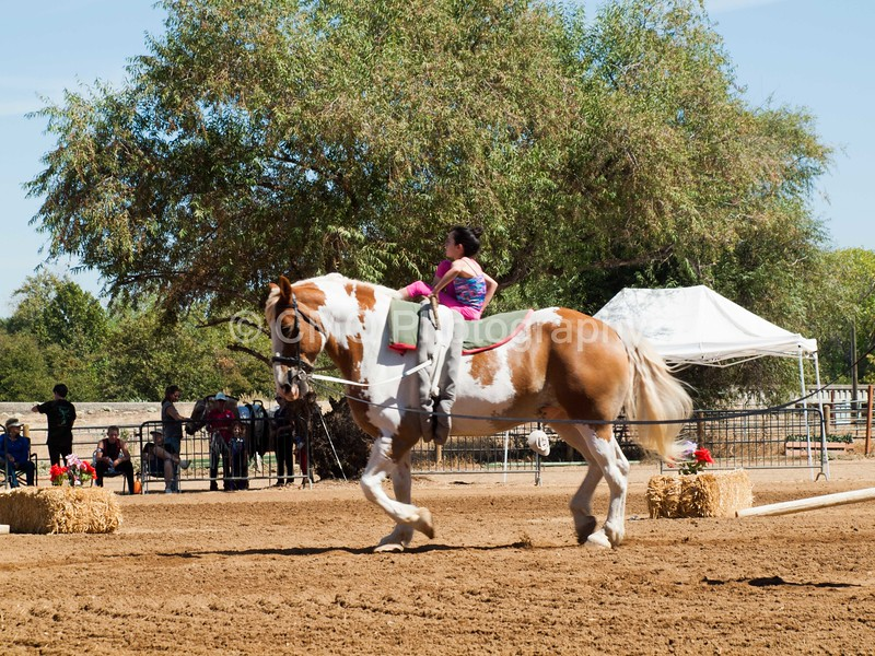 2016_Vaulting_Camelot_(2434_of_3844)