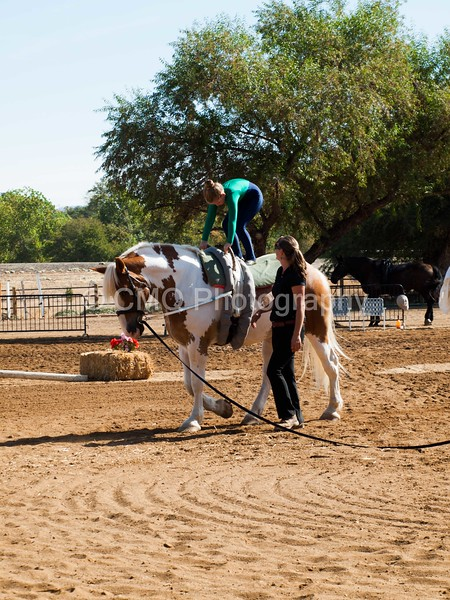 2016_Vaulting_Camelot_(1454_of_3844)