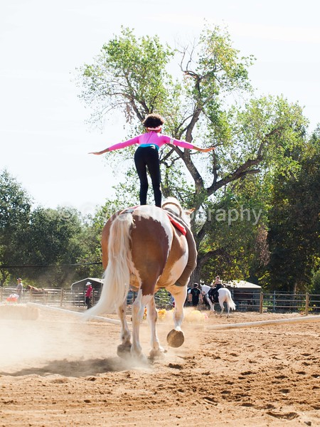 2016_Vaulting_Camelot_(1219_of_3844)