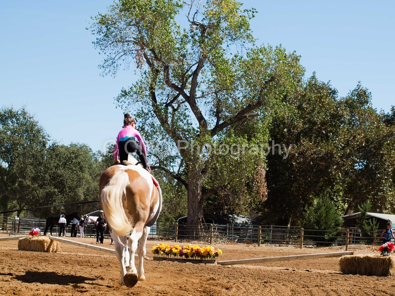 2016_Vaulting_Camelot_(2467_of_3844)