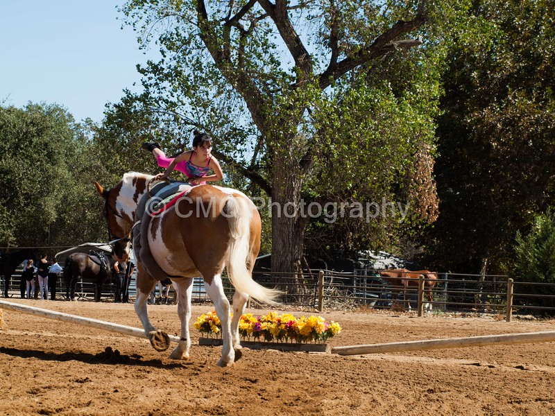 2016_Vaulting_Camelot_(2442_of_3844)